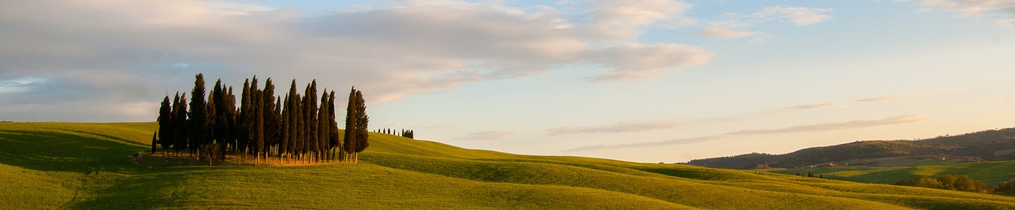 Bike tour in Val d'Orcia