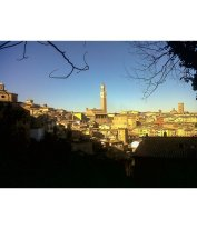 Bike tour da Firenze a Siena